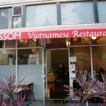 Blossom Closed for Remodel: Re-opening Monday 6/13/11
